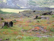 beim Mount St Helens